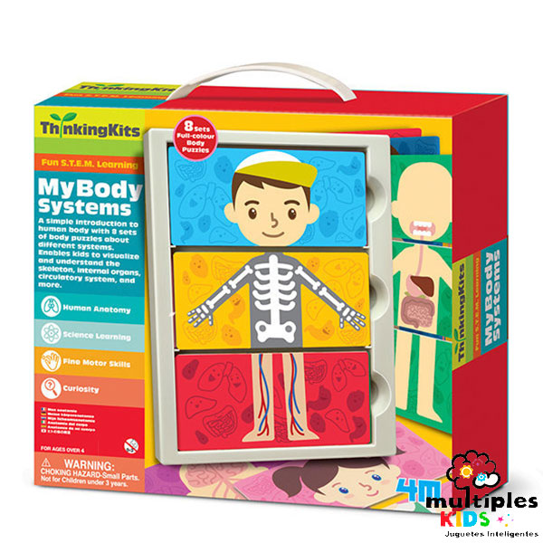 El cuerpo humano 4M