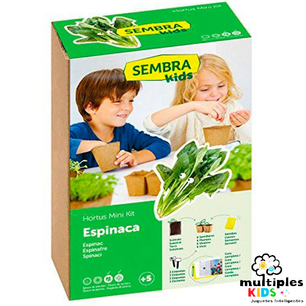 Mini kit espinacas