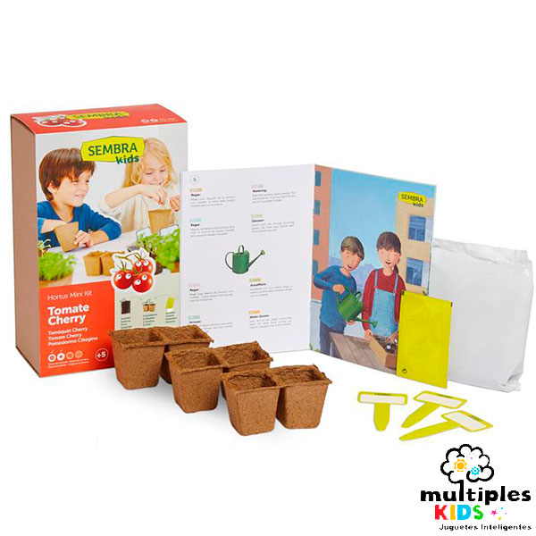 Mini kit de tomates cherry